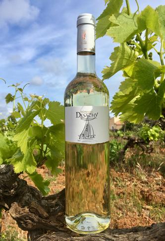 Vin blanc cuvée Pierre
